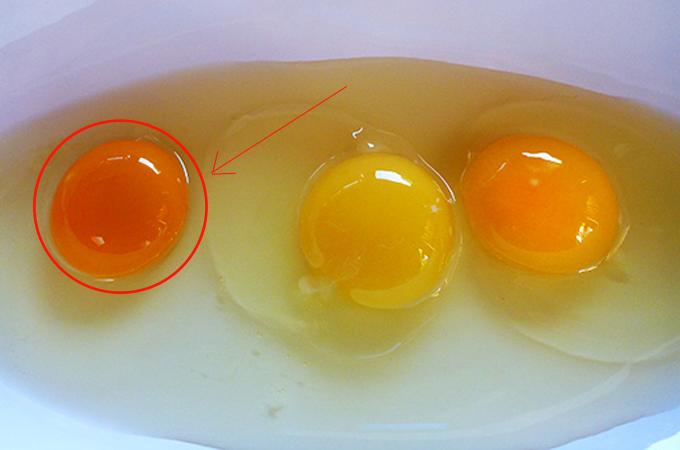 สีไข่แดงไข่ไก่