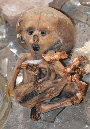 "Pic shows: The dead babies and human remains found in an old laboratory. A medical student stumbled upon a 'house of horrors' when exploring an old laboratory and finding jars stuffed full of dead babies and human remains. Georgiy Grigorchuk, 24, had gone to the crumbling old histopathological lab which was used to examine human tissue in order to study the manifestations of diseases, in the town of Tobolsk in south Russia. Walking through the local gardens he had seen a door to the crumbling old building open and had gone inside. There he discovered the jars of formalin stuffed full of dead babies and human body parts. He said: ""It was like walking into a house of horror or stumbling upon some crazed scientist's laboratory. ""One of the jars on the floor had what looked like an alien in it. ""It had a massively deformed head and its mouth was open as in the painting 'The Scream'. ""Its legs were wrapped up around its chest and it was lying among the broken remains of the jar. ""It looked like someone had dropped it to thrown it as there wasn't a table nearby for it to fall off. ""In another jar by the window there was another baby corpse. ""It had operating scars on it. ""Being a medical student, I am used to seeing dead bodies, etc, but not like this."" Scattered around the room were also medical histories of patients and autopsy notes including names and dates of birth, as well as other jars in a box full of human remains. Sickened Grigotchuk took photos of the horror find and reported it to the police. A spokesman for the prosecutors office said that the lab had closed down in 2013 and that they had ""started an investigation."" (ends)"